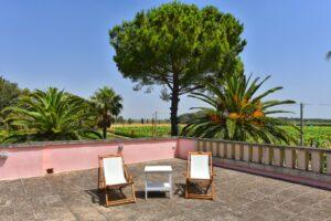 Rooftop with wineyard. Terrazzo con vista vigneti. Terrasse mit Weinanbau
