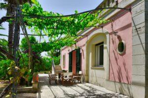 Eastview with wineyard, vista est con pergolato di vigna, Weintrauben Pergola